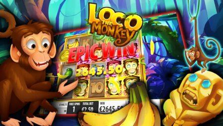 Loco the Monkey — Quickspin